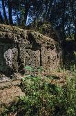 Necrópolis etrusca — Foto de Stock