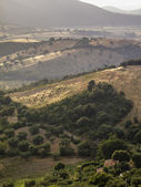 Italy, tuscany, countryside and wineyards seen from Capalbio — Stock Photo