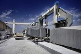 мраморная сокращающаяся фабрика — Стоковое фото