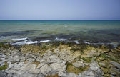 View of the rocky coast — Stock Photo