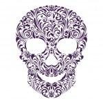 Floral skull — Stock Vector #15342963