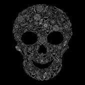 Abstract floral skull — Stock Vector