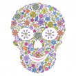Floral skull isolated on white background. — Stock Vector