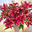 Pink lilies on a colored background - Stock Photo