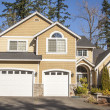 Suburban house — Stock Photo #21088713
