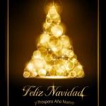 Christmas card, tarjeta navide� — Stock Vector #13646539