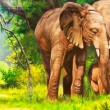 Oil paintings. An elephant - Stock Photo