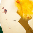Inquisitive little yellow Easter chick — Stock Photo