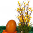 Orange Easter Egg with spring flowers - Stock Photo