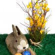 Royalty-Free Stock Photo: Easter bunny rabbit with colourful eggs