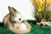 Brown and white ornament rabbit with egg — Stock Photo