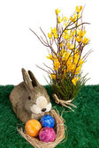 Easter bunny rabbit with colourful eggs — Stock Photo