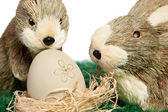 Two adorable little Easter bunnies — Stock Photo