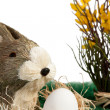 Brown and white Easter bunny - Stock Photo
