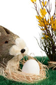 Brown and white Easter bunny — Stock Photo