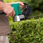 Hedge cutting — Stock Photo #29340425