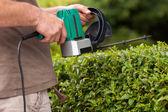 Hedge cutting — Stock Photo