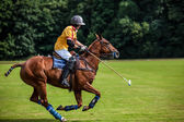 Joueur de polo — Photo