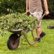 Stock Photo: Garden work