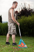 Grassland cleaning — Stock Photo