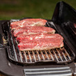 Grill Time — Stock Photo #33250973