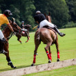 Polo horse break — Stock Photo