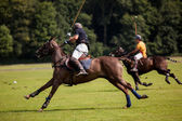 Polo bal hit — Stockfoto