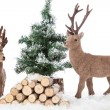 Reindeers Living Room — Stock Photo