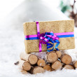 Nature Xmas Gift stand — Stock Photo