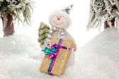 XMas Gift from a Snowman — Stock Photo