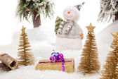 Suprise from a snowman — Stock Photo
