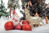 Reindeer meets Santa Claus — Stock Photo
