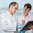 Stock Photo: Chemist Education