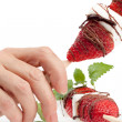 Posing strawberry Stick — Stock Photo