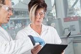 химик образования — Стоковое фото