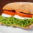 Mozzarella-sandwich — Stockfoto