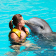 I love dolphins! — Stock Photo #24038235