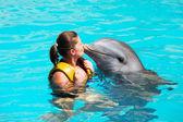 I love dolphins! — Stock Photo