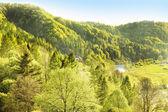 Idyllic landscape of Polish mountains — Stock Photo