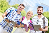 Group of students learning in the park — Stock Photo