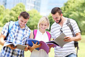 Joyful students learning in the park — Stock Photo