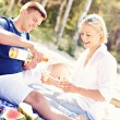 Adult couple having picnic at the beach — Stock Photo #50423393
