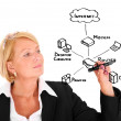 Businesswoman drawing an internet diagram — Foto de Stock   #6263151