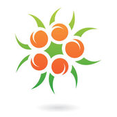 Apricots and Leaves Abstract Icon — Stock Vector