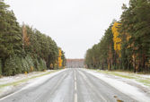 Road in forrest covered by first snow in fall — Stock Photo