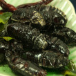 Deep-fried insects - Stock Photo