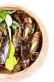Crispy fried insects — Stock Photo
