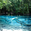 The Emerald Pool, Krabi, Thailand — Stock Photo