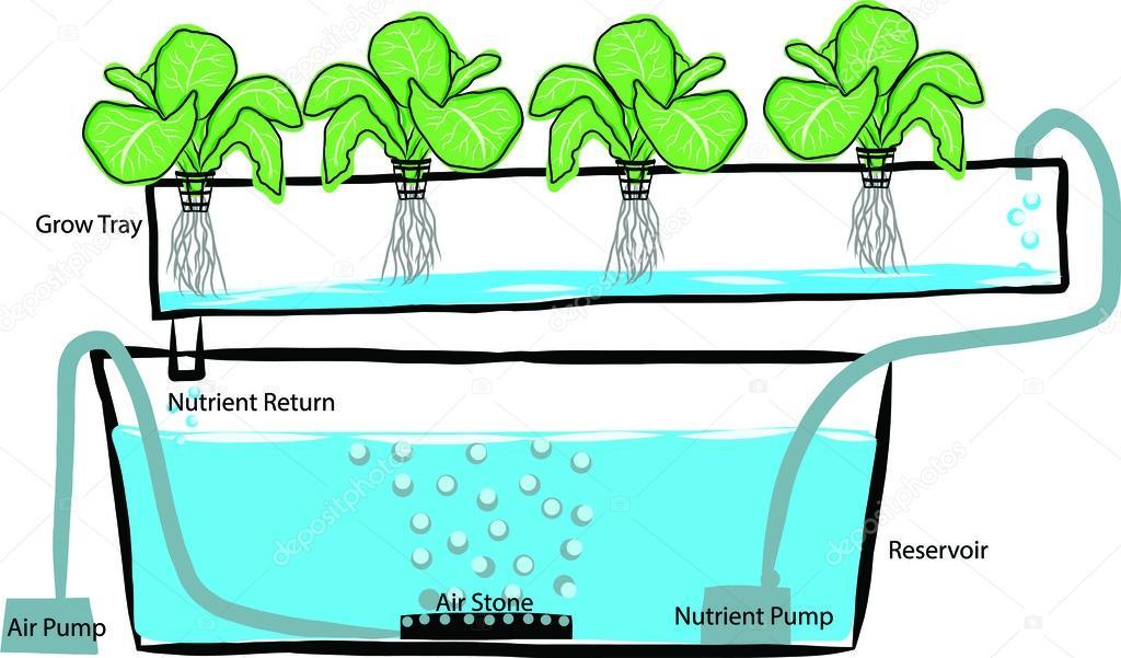 Hydroponic Gardening System Hydroponics Setup Diagram