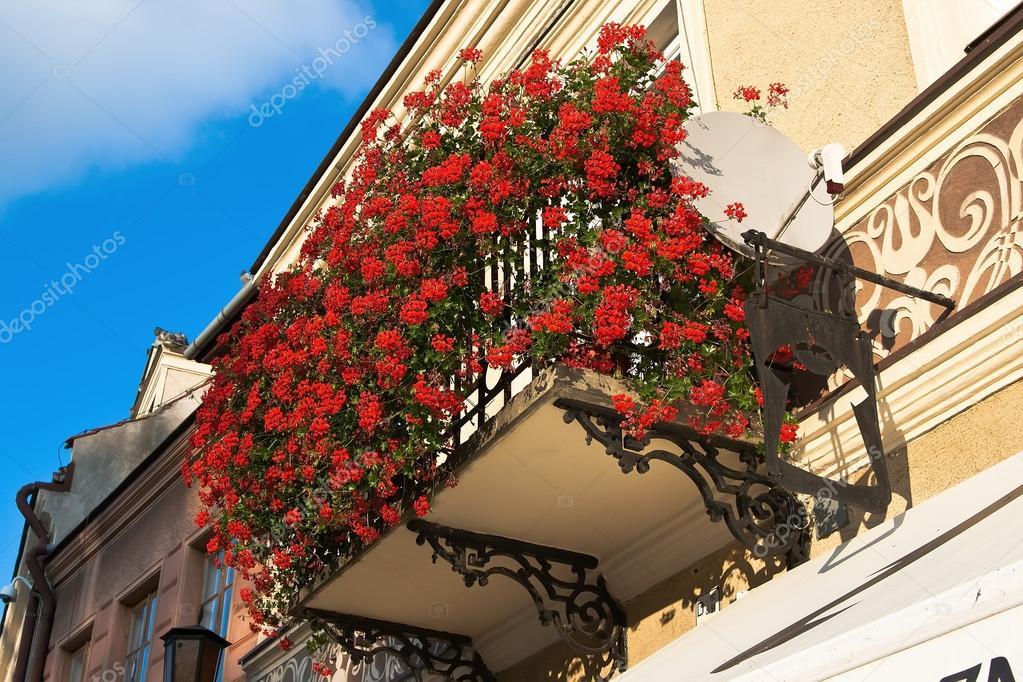Балкон с цветами герани.